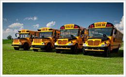 trasporti scolastici autobus pullman scuola